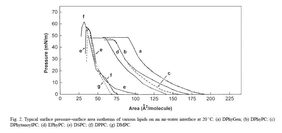 二硬脂酰基磷脂酰胆碱DSPC|CAS 816-94-4