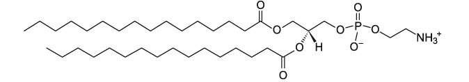 二棕榈酰基磷脂酰乙醇胺DPPE|CAS 923-61-5