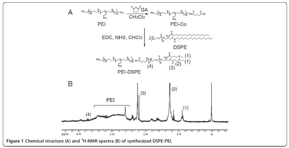 二硬脂酰基磷脂酰乙醇胺DSPE|CAS 1069-79-0