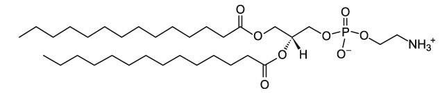 二肉豆蔻酰基磷脂酰乙醇胺  DMPE|CAS 998-07-2