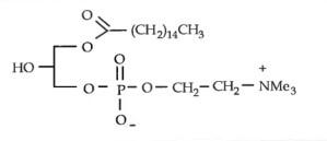 棕榈酰溶血卵磷脂 P-LysoPC|CAS 17364-16-8